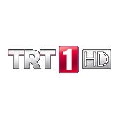 trt-1.png#asset:9793