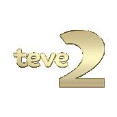 tv-2.png#asset:9781